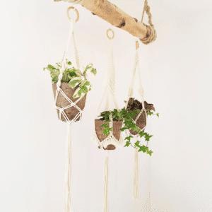 Makramee Blumenampel im Geschenke Shop Collect your dreams